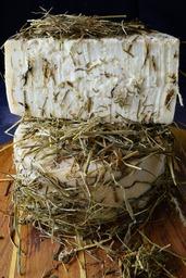 Caciotta (Caciottona) di Capra al Fieno