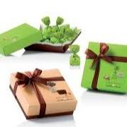tartufidolce box pistache